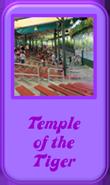 TempleTiger.png